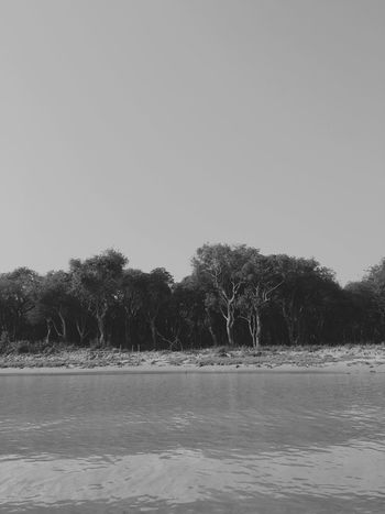 Monochrome Photography Cambodia Tonlesap Lake Tree Blackandwhite No People Landscape Nature Silence