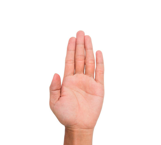 Hand signHand sign of five, fifth, etc. with white backgroundwith white background Communication Conceptual Fifth Five Gestures Human Finger Message Nails Palm Present Rise Show Sign Symbol Thumb Wrist