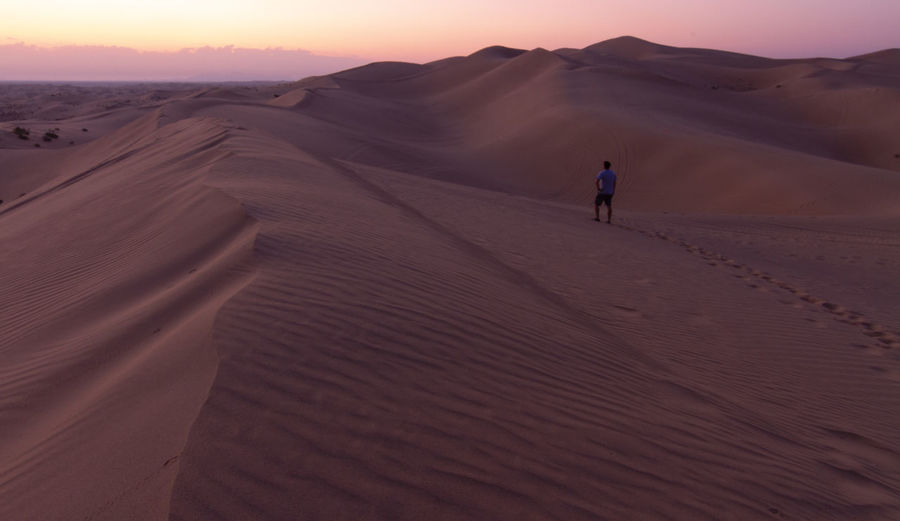 Scenic view of desert during sunset