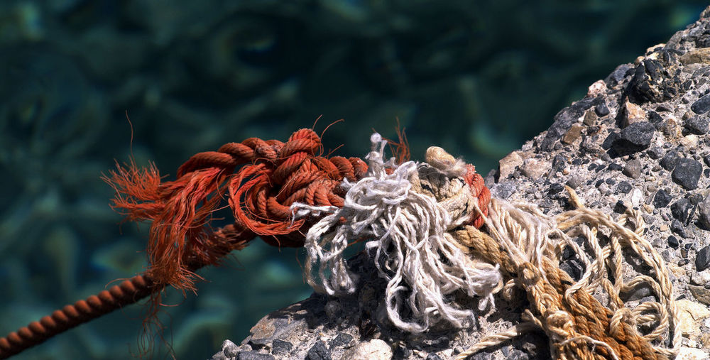 Close-Up Of Ropes On Hook Against Sea