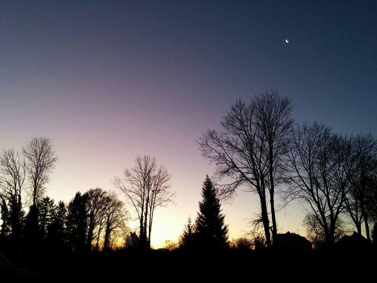 Daynight Moon Sun Beautiful Dießen Diessenamammersee Trees Baum 🌳🌲 Colorful Morgen