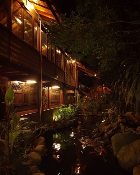 Night Illuminated Outdoors No People Tree Architecture Water Restaurant Bsd City Serpong Tangerang, Indonesia Tangsel