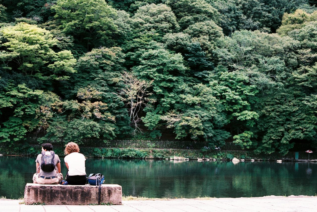 Rear view of man and woman sitting by lake against trees