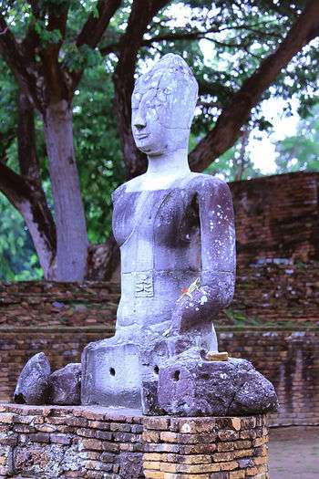 Old Buddha in AYUTTHAYA province, Thailand Old Buddha Architecture Art And Craft Belief Craft Creativity Day Focus On Foreground Human Representation Idol Male Likeness No People Old Buddha Statue Old Buddha Image Outdoors Place Of Worship Plant Religion Representation Sculpture Spirituality Statue Tree