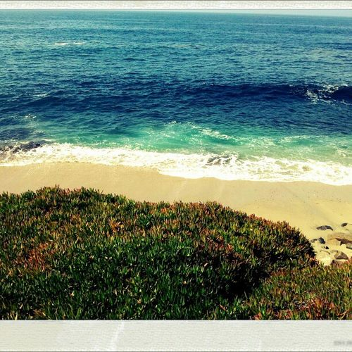San Diego Beach Aerial Shot Beachphotography Life Is A Beach Catching Waves Waves Landscapes With WhiteWall