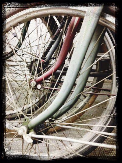 Fahrrad Fahrräder