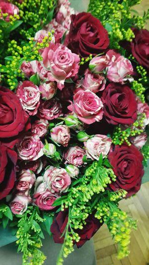 Flowers Beauty Colours