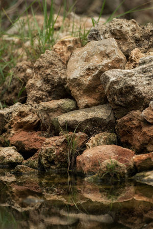 Stones are reflected in the water Nature Reflection Beauty In Nature Close-up Day Freshness Nature No People Outdoors Pond Water Reflections In The Water Rock - Object Tranquility Water