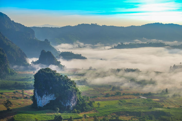 Morning sunrise in the Phulanka, Phayao Beauty Beauty In Nature Cloud - Sky Cultures Field Fog Forest Freshness Health Spa Landscape Mountain Mountain Peak Mountain Range Natural Parkland Nature No People Outdoors Sky Social Issues Sunbeam Sunlight Sunset Tourism Travel Tree