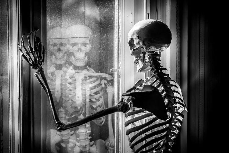 Hungary Photography Nikon D5200 Horror Scary Blackandwhite Black & White Bnw