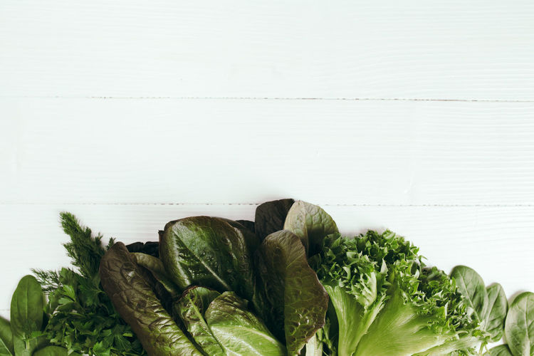 Flat lay with fresh green salad leaves of spinach, lettuce, romaine on white background