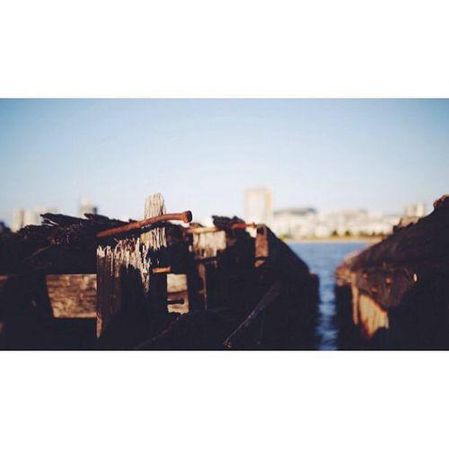 Shipwrecks, Homebush Bay // Vscocam