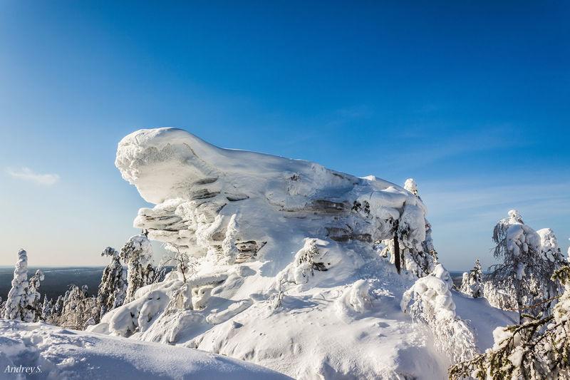 Камень Черепаха Stone Snow ❄ Nature Landscape