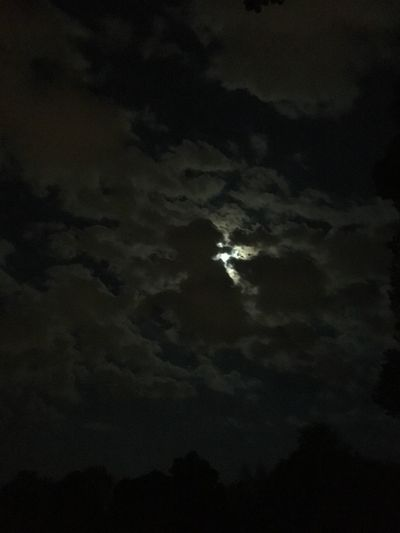 Moonlight Moonlight Sky Night Beauty In Nature Cloud - Sky Low Angle View Nature No People