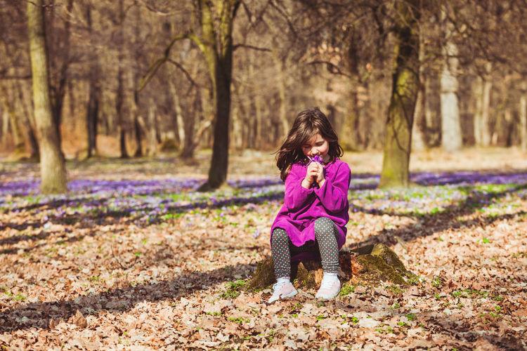 Full length of girl sitting at forest