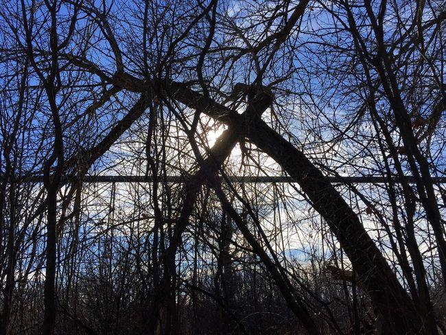 Coulees Welcomeweekly Eyemphotography Alberta Canada EyeEm Best Shots Lethbridge Landscape_photography Train Trestle Bridge Trees