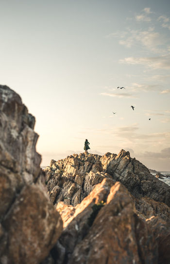View of birds on rock formation against sky