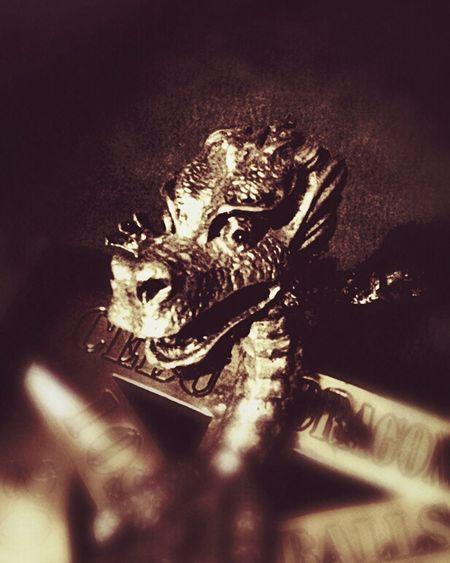 The Golden Dragon of Cebu Cebu Dragons Piweephotography Iron Dragon Dragon