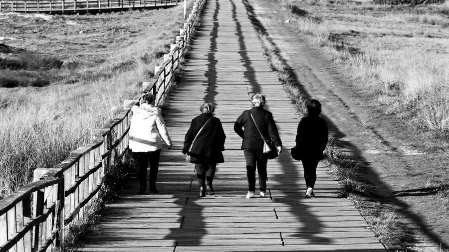 Enero de paseos