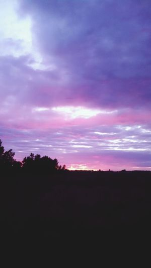 Sunset music played by one love, time spent with another, Polyamory Pure Michigan