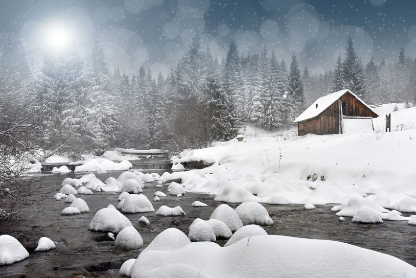 Winter landscape with snowy trees and a mountain hut. Christmas concept Christmas Postcard Snow ❄ Snowing ❄ Winter Wintertime Xmas Beauty In Nature Built Structure Christmastime Cold Temperature Day Greetings Nature No People Outdoors Snow Snowfall Snowflake Snowy Tranquility Tree Weather Winter Winterwonderland