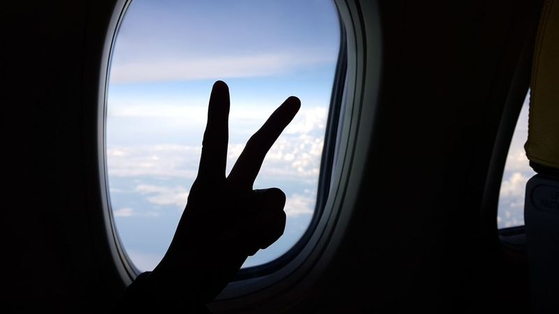 A RABBIT 🐰 Human Hand Point Of View Sky Airplane Love Photography Travelphotography Journey EyeEmNewHere Windowshade Window Bluesky