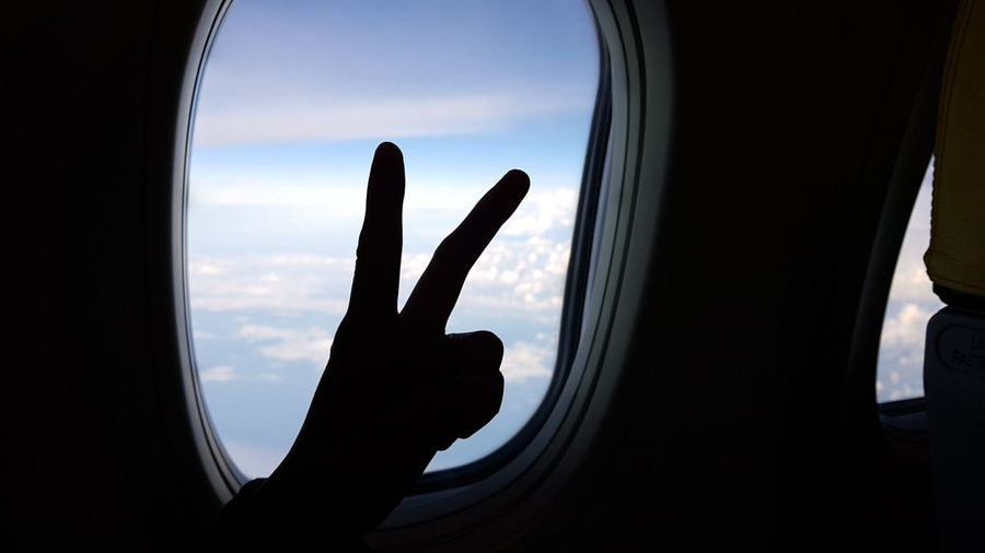 A RABBIT 🐰 Human Hand Point Of View Sky Airplane Love Photography Travelphotography Journey EyeEmNewHere Windowshade Window Bluesky