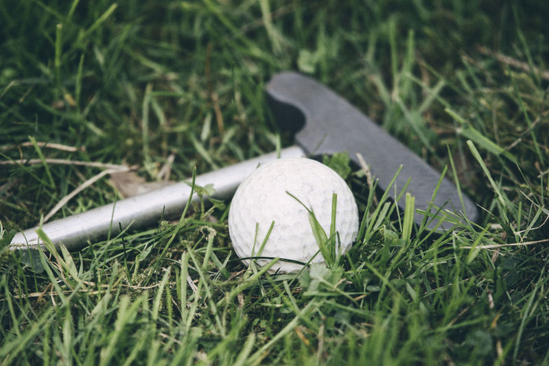 The close up image of golf club steel blade with old white ball on grass Golf Active Lifestyle  Ball Close-up Day Field Focus On Foreground Golf Golf Club Grass Green Color Growth High Angle View Land Nature No People Outdoors Plant Selective Focus Sport Still Life Sunlight White Color