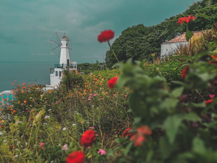 😍😍😍 Lighthouse Huaweiphotography HuaweiP10 HuaweiPhilippines Bokeh Garden Sky Happiness Goodvibes Beautiful EyeEm Selects EyeEm Ready   EyeEmNewHere