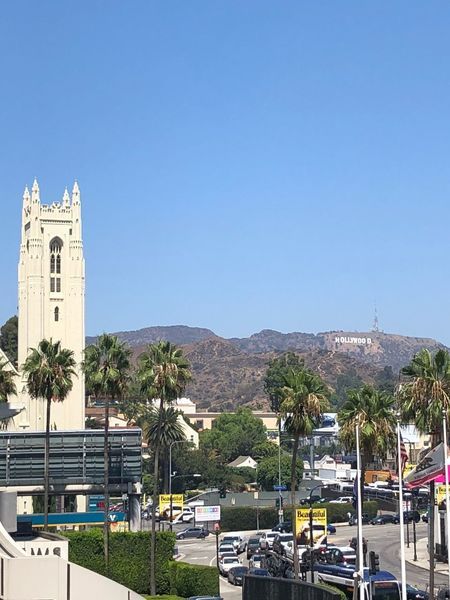 Hollywood Sign Hollywood Sign Hollywood Sky Building Exterior Architecture Built Structure Clear Sky Tree Nature Copy Space Day City Outdoors