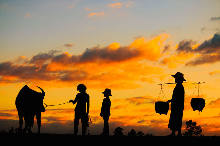Silhouette people standing with bull on field against sky during sunset