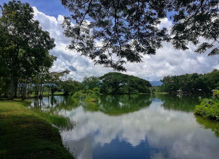 Halcyon Philippines Negros Island Negros Occidental Lake Mabinay Halcyon EyeEm Best Shots Eyeemphotography EyeemPhilippines Travel Travelph Wonderful View Creation HuaweiP9 PhonePhotography Mobilephotography AraIsaiahLim Photooftheday