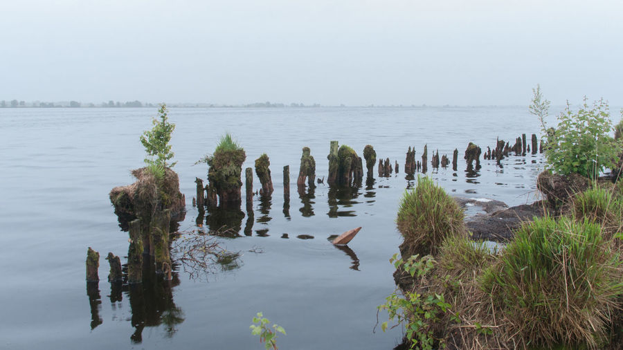 Wooden posts in lake against sky