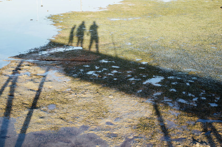 Shadow of a family Algarve Family Harbor Harbour Bridge Day Field Focus On Shadow High Angle View Land Leisure Activity Lifestyles Nature One Person Outdoors Plant Puddle Real People Sea Shadow Sunlight Unrecognizable Person Water