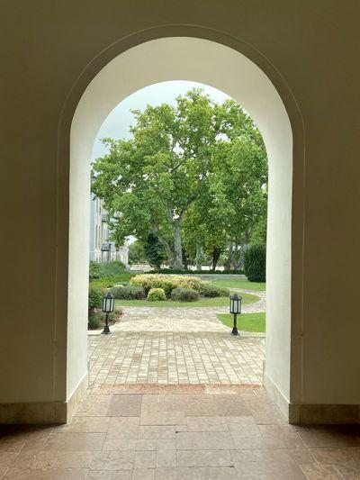 Trees seen through entrance of building