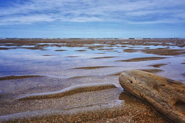 Sea floor with