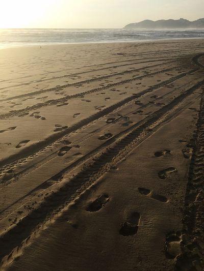 Sand Beach Sand