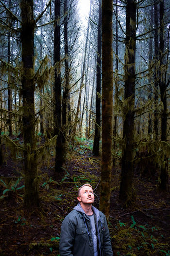 Man looking up while standing against trees in forest