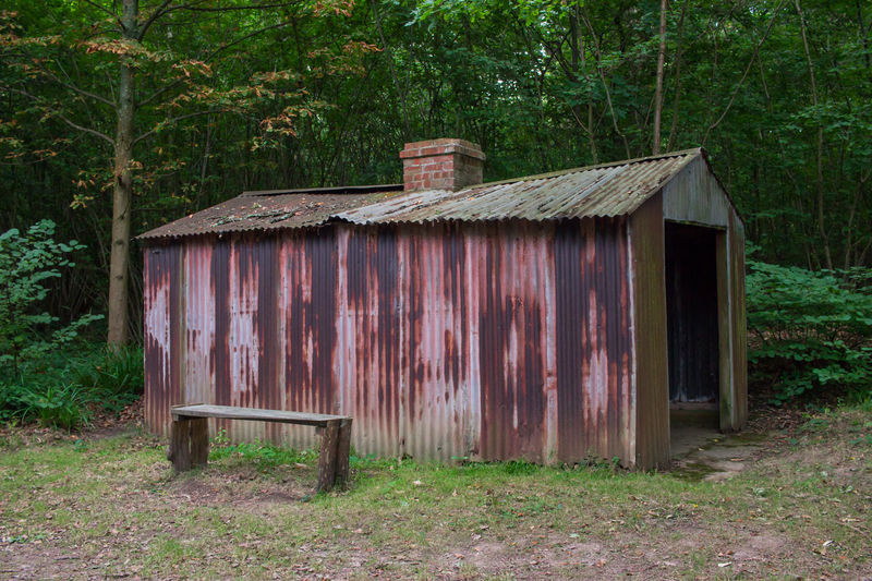 Old wooden house on field against trees in forest