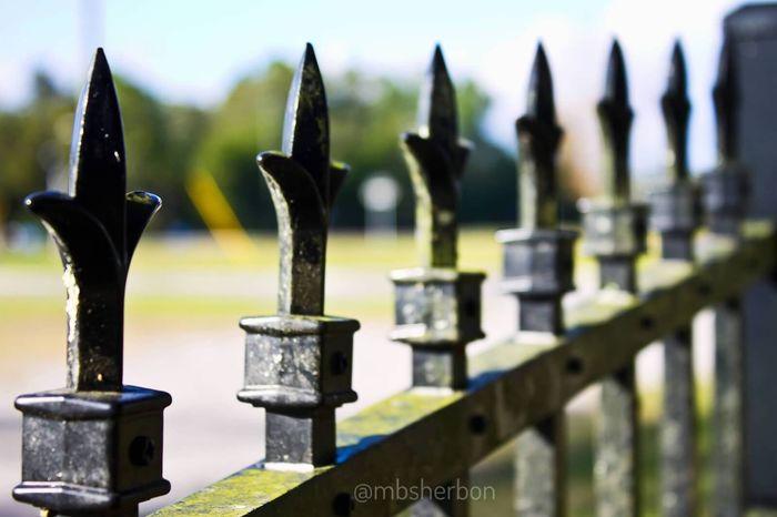 Fence Landscape Landscape_Collection Urban Landscape Cemetery Explore Eye4photography  Florida Travel Cityscapes