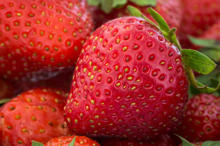 Abundance Backgrounds Beauty In Nature Berry Fruit Close-up Colorful Detail Freshness Fruits Fruits Of The Day Growth Macro Natural Pattern Nature No People Organic Picture With Smell Red Strawberries Strawberry Summer