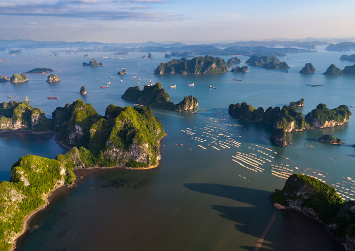 Aerial Shot Bai Tu Long Bay Ha Long Aerial Aerial Photography Aerial View Aerialphotography Beach Beauty In Nature Day Ha Long Bay High Angle View Horizon Over Water Nature No People Outdoors Scenics Sea Sky Tranquil Scene Tranquility Travel Destinations Tree Water Fresh On Market 2017