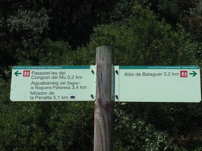 Moli D'Alos Alos De Balaguer Text Communication Western Script Plant Tree Sign Green Color Information Nature Outdoors