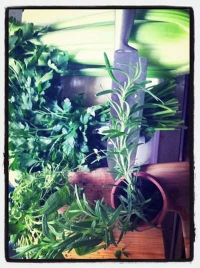 My Herbs For Turkey & Dressing Rosemary, Parsley & Thyme; Isn't That A Song?