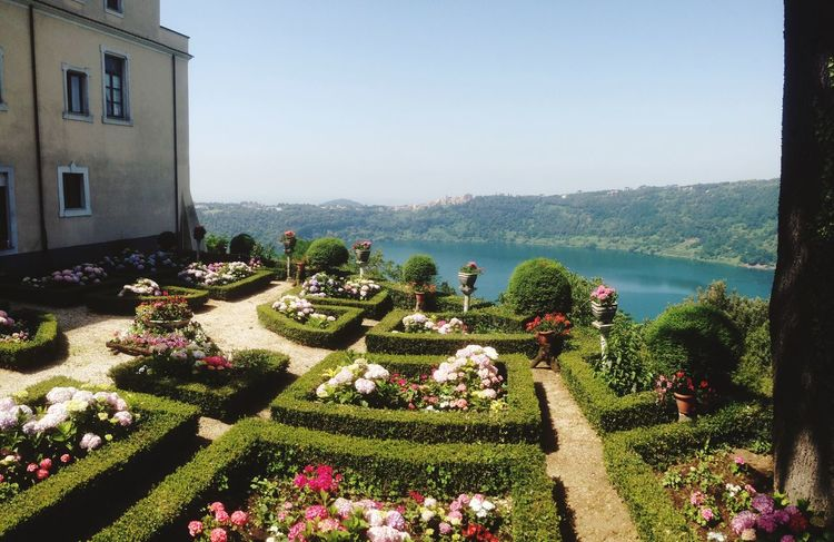 IPhoneography Garden Lake View Flowers Outdoors Plant Green Color Sky Flower Flowers,Plants & Garden Nemi's Lake Italy