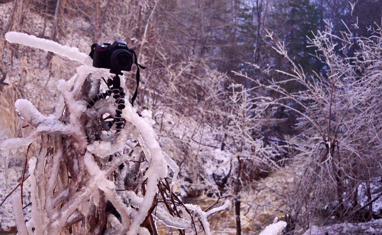 photography themes, camera - photographic equipment, photographing, technology, tree, outdoors, digital camera, winter, photographer, day, cold temperature, nature, filming, digital single-lens reflex camera, close-up