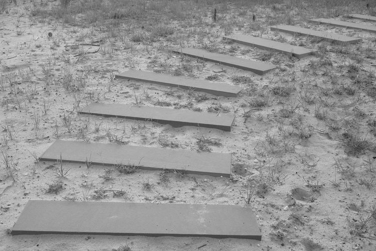 Sandy Steps Absence Built Structure Empty Land No People Outdoors Sand Steps And Staircases Steps And Stairs