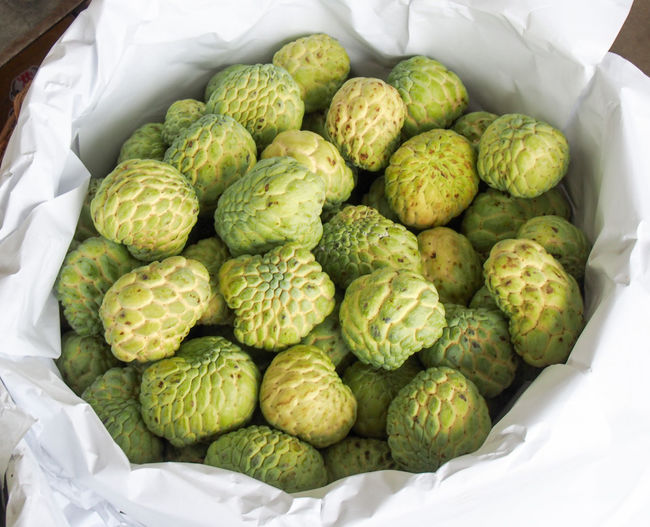 Custard apples in a basket Abundance Asian  Basket Business Container Custard Apple Delicious Dessert Food Freshness Fruit Green Color Juicy Large Group Of Objects Natural Organic Ripe Rough Sweet Tasty Thai Trade Tropical Wholesale