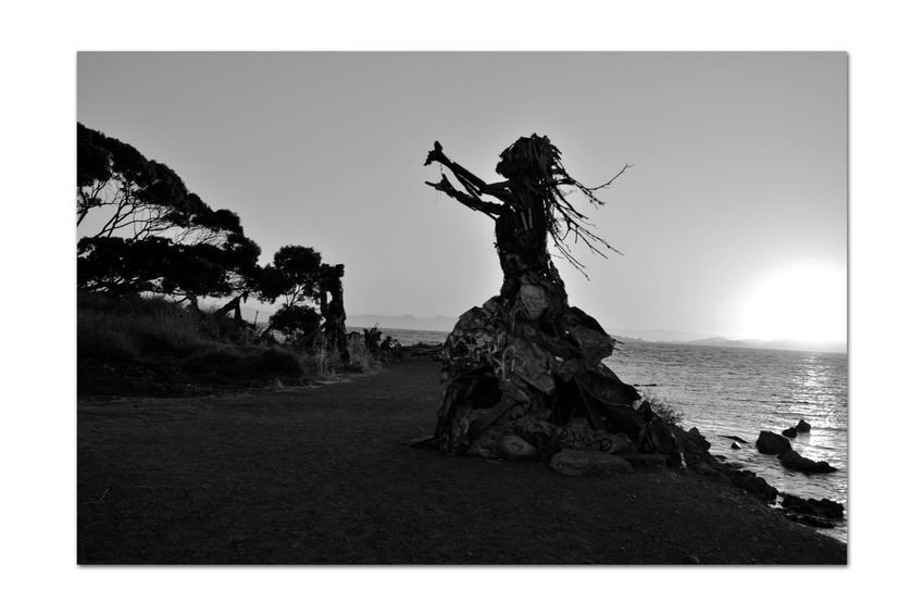 The Albany Bulb 7 Albany, Ca. Waterfront Peninsula Eastern Shore San Francisco Bay Former Landfill Dump For Contruction Materials Closed 1987 Became A Home For Urban Artists An Anarchical No Man's Land Outsider's Art Sculptures, Murals, Graffiti, Installation Art Made From Waste Recycled Materials The Bulb Monochrome_Photography Monochrome Black & White Black & White Photography Black And White Collection  Black And White Sculpture : Water Goddess The Humanoid Silhouettes