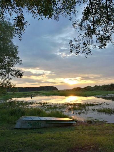 Летний вечер. лето между небом небо облака вечер спокойствие звон комаров Tree Sunset Lake Reflection Sky Grass Landscape Cloud - Sky
